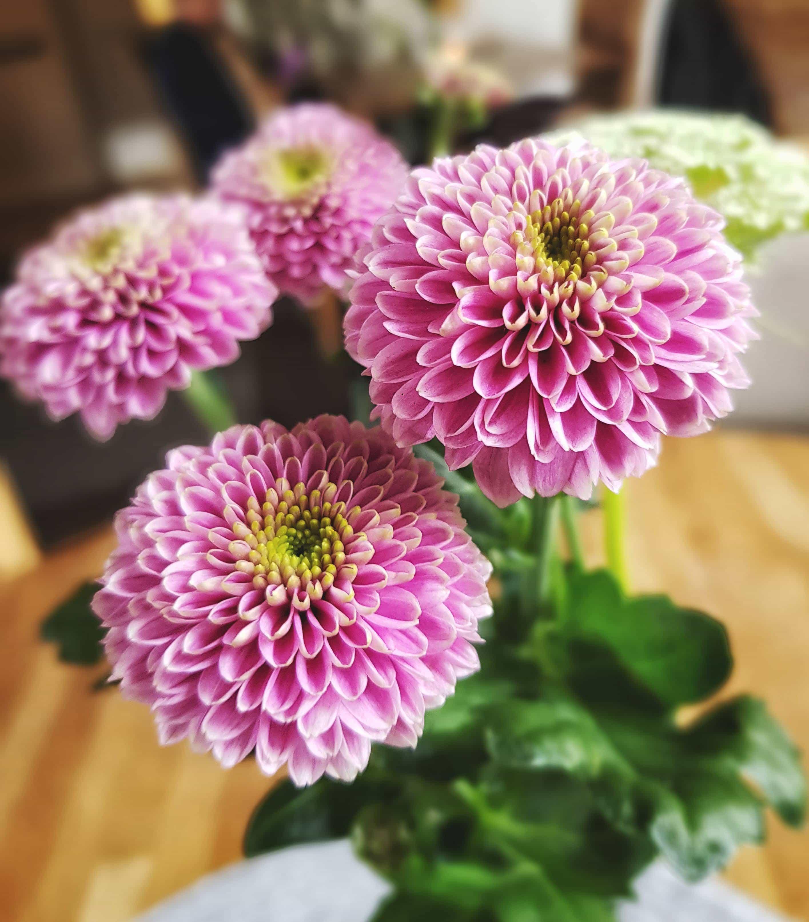 Blommor på bordet